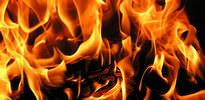 Almanya'da yine yangın