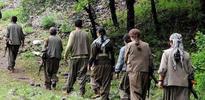 Piknikçiler PKK ile karşılaştı!
