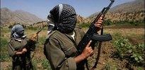 İki işçi PKK tarafından kaçırıldı