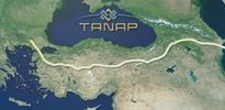 Türkiye'nin payı yüzde 30