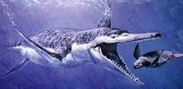 Gebze'de 340 milyon yıllık dinozor bulundu