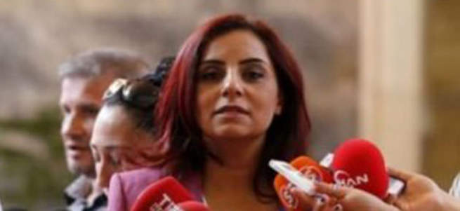 CHP'li vekil Ermeni diasporasını savundu