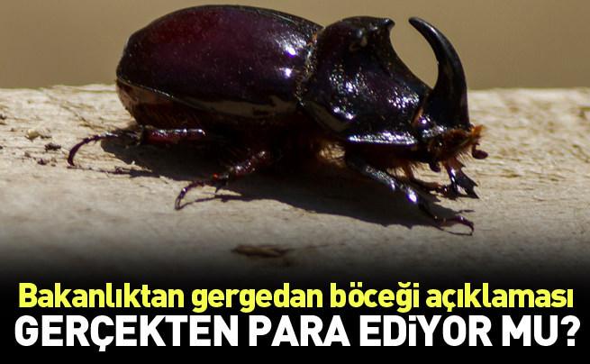 BakanlıK 'Gergedan böceği' için açıklama yaptı