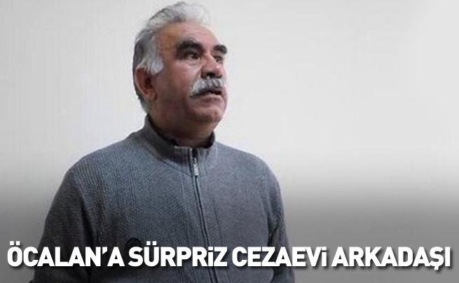 Öcalan'a cezaevinde sürpriz arkadaş