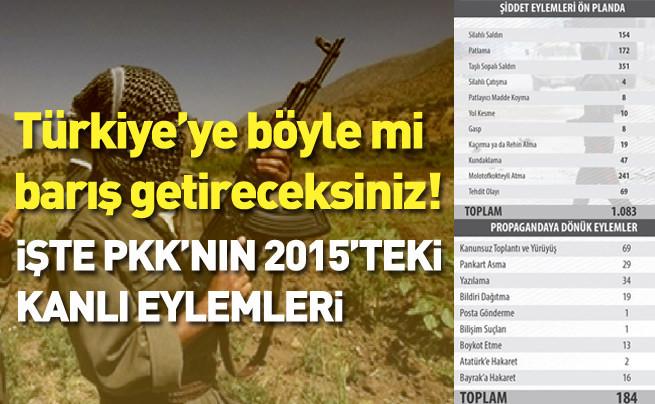 PKK terörü 2015'te zirve yaptı