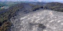 Bursa'daki yangından geriye kalanlar
