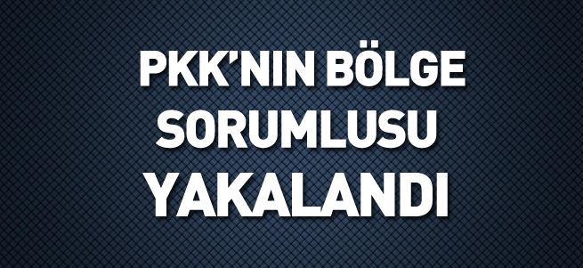 PKK'nın bölge sorumlusu yakalandı