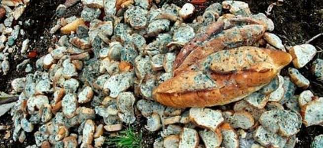 Günlük israf edilen ekmek sayısı 5 milyona ulaştı