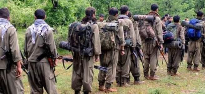PKK'lılardan BM, NATO,Obama ve Merkel'e feryat