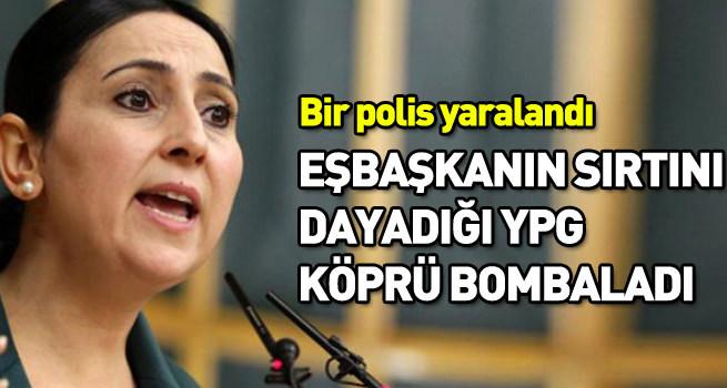 Eşbaşkanın sırtını dayadığı YPG köprü bombaladı!