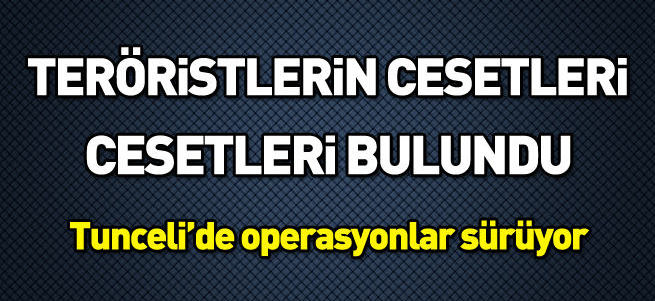 Tunceli'de hava operasyonunda vurulan 30-35 PKK'lıdan 10'unun cesedi bulundu