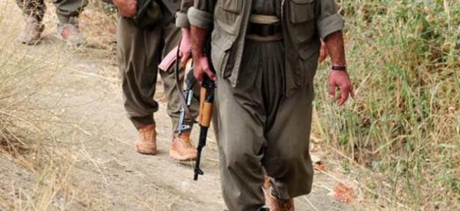 Hakkari'de 11 terörist öldürüldü