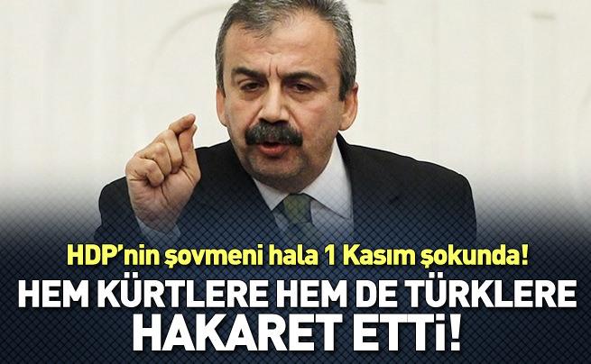 Sırrı Süreyya'dan Türklere ve Kürtlere hakaret