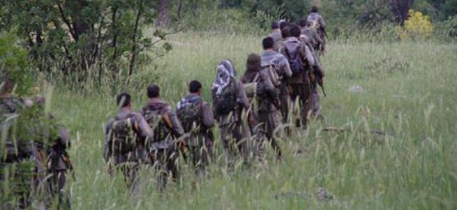 İtiraf ettiler: 50 terörist öldürüldü