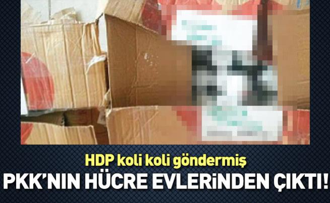 HDP'den PKK'ya koli koli yardım!