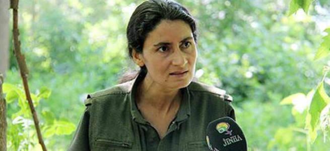 Akademisyenlerin ihanet bildirisinin arkasında PKK çıktı!
