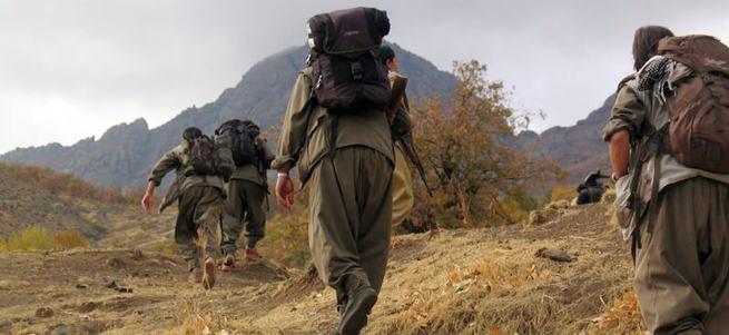 Kürtler PKK yenilsin istiyor