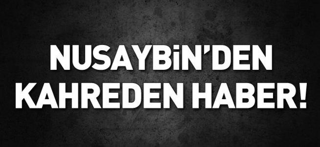 Nusaybin'den kahreden haber!..
