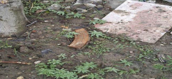 PKK'lıların kullandığı evin bahçesinden çıktı!