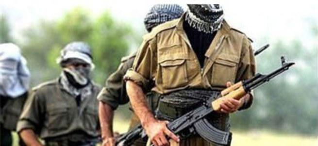 PKK'nın üst düzey bölge sorumlularından Ekrem Güney öldürüldü