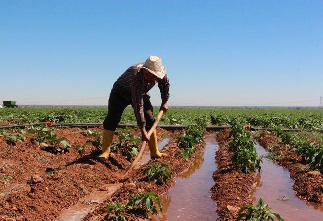 Kurak arazilerin sulanmasıyla refah seviyesi yükseldi