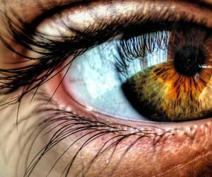 İnsan Gözü Kaç Megapiksel